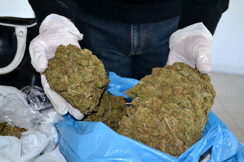 La marijuana sequestrata (foto archivio)