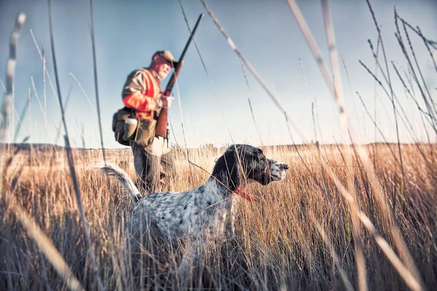 Un cacciatore
